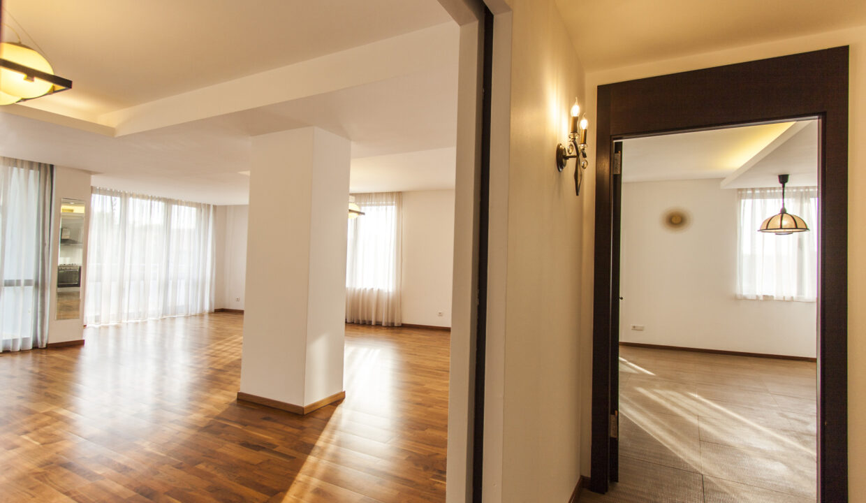 Apartament spatios Iancu Nicolae